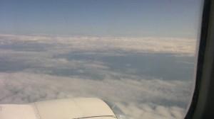 letim